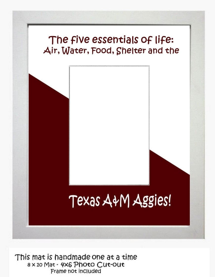 Amazon.com: Texas A&M University Picture Frame Photo Mat Select from ...
