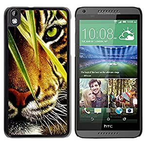 Qstar Arte & diseño plástico duro Fundas Cover Cubre Hard Case Cover para HTC DESIRE 816 ( Tiger Jungle Forest Rainforest Eye Feline)
