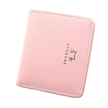 cabdeeb4e48a Amazon.com : DZTZ Women Short Style Fashion Mini Thin Folded Coin ...
