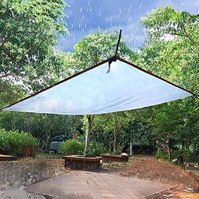 Lona 4-Mil Clear Canopy Sun Shade con Ojales, Impermeable para Jardín/Invernadero/Ventana/Suculentas, Transparente (Size : 5mx6m): Amazon.es: Hogar