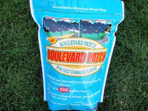 Turf Boulevard Lawn Seed Patch, 90 Spots/250 Sq Feet