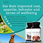 AminAvast Kidney Support Supplement for Cats and Dogs, 300mg - Promotes and Supports Natural Kidney Function - Supports Health and Vitality - Easily Administered - 60 Sprinkle Capsules 10