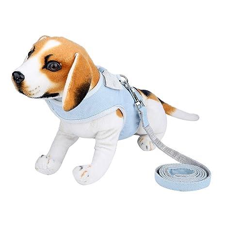 Haofy Arnés para Perros Chaleco con Cuerda de Tracción para Perro ...