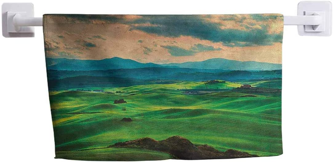 """DayDayFun Hand Towel Tuscany Fading Resistant and Durable Tuscany Spring Rolling Hills on Sunset Agriculture Farmlands Volterra Italy 12"""" x 28"""" Seafoam Green"""