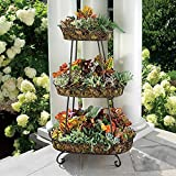 Sunjoy Oval Wrought Iron Plant Stand For Sale