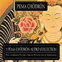 Good Medicine Speech by Pema Chodron Narrated by Pema Chodron