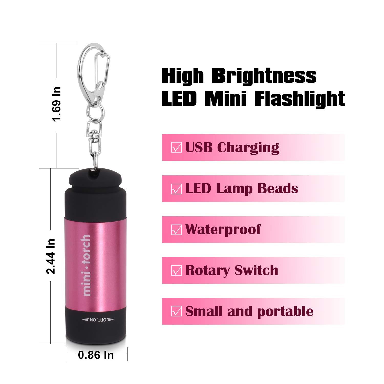Amazon.com: VICOUP 2 unidades de linterna LED para llavero ...