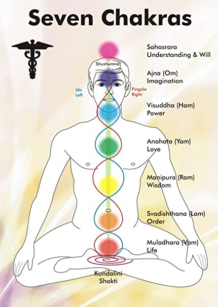photograph relating to Printable Chakra Chart known as Vinteja Print 7 Chakras Charts Poster (A3, Multicolour