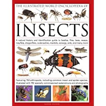 The Illustrated World Encyclopedia of Insects: A Natural History and Identification Guide to Beetles, Flies, Bees, wasps, Springtails, Mayflies, Stoneflies, Dragonflies, Damselflies, Cockroaches, Mantes, Earwigs, Stick and Leaf Insects, Bristletails, Dipteran, Crickets, Bugs, Grasshoppers, Fleas, Spide