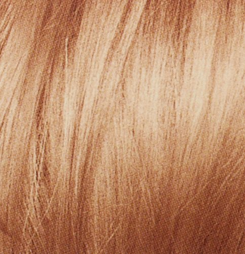 Oreal Preference Paris Couture Hair Color, 8RG Rose Gold Blonde in ...
