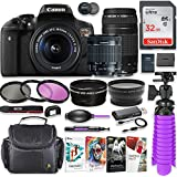 Canon EOS Rebel T6i 24.2MP DSLR Camera with Canon 18-55mm STM Lens & Canon EF 75-300mm III Lens Bundle + 32GB SD Memory + HD Filters + Spider Tripod + Professional Bundle with Corel Software Kit