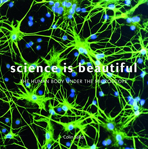 Science Is Beautiful: The Human Body Under the Microscope