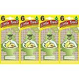 Little Trees Creamy Avocado Air Freshener, (Pack of 24)