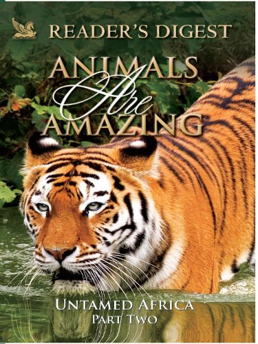 animals-are-amazing-untame-africa-part-two