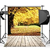 SJOLOON Autumn Photography Backdrop Fall 10x10ft Wood Floor Studio Newborn Cute Photography Photo Background 10746