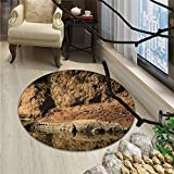 Africa Round Rugs for Bedroom Nile Crocodile Swimming in the River Rock Cliffs Tanzania Hunter Geography PrintOriental Floor and Carpets Brown Tan