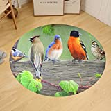 Gzhihine Custom round floor mat Manual Climaweave IndoorOutdoor Decorative Throw Pillow 18 X 13- Birds on a Line II