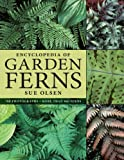 Encyclopedia of Garden Ferns, Sue Olsen, 0881928194