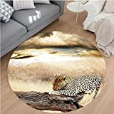 Nalahome Modern Flannel Microfiber Non-Slip Machine Washable Round Area Rug-esting Under Dramatic Cloudy Sky Africa Safari Wild Cats Nature Picture Print Beige Brown area rugs Home Decor-Round 75''