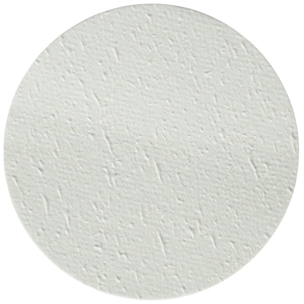 0.5 micron Pore Size GVS Life Sciences 1215548 Borosilicate Glass Fiber Prefilter Membrane with Binder 47mm Diameter, Pack of 100
