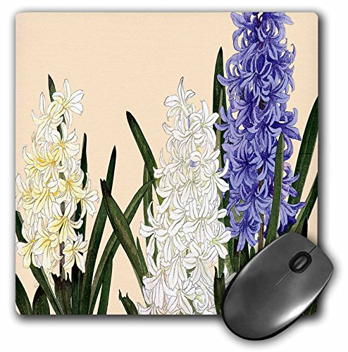 3dRose BLN Japanese Woodblock Flowers by Tanigami Konan - Hyacinth, Fragrant Spring Flowers with Clusters of White and Lavender - MousePad (mp_171396_1)