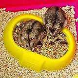 Ferplast Luara Small Hamster Cage | Fun