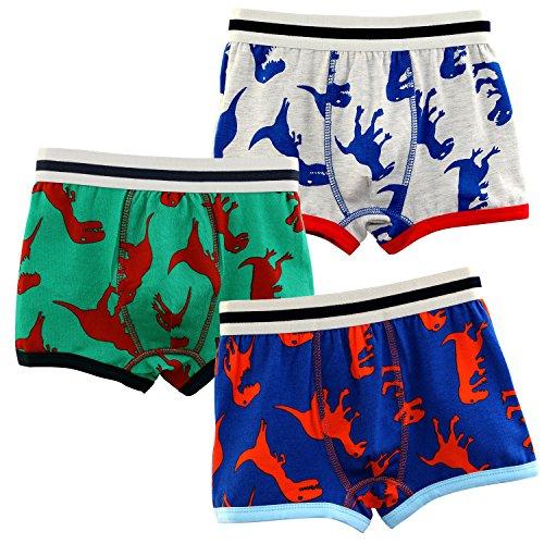BOOPH Baby Toddler Kids Boys Boxer Brief 3 Pack Underwear Dinosaur , 4t-5t(110cm)