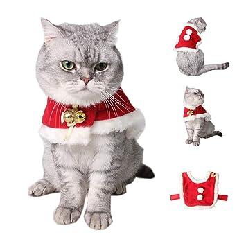 Amazon.com: Symphony - Disfraz de Navidad para gatos ...
