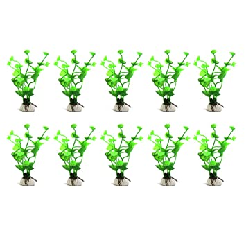 Vasche In Plastica Per Piante.Sourcing Map 10pcs Verde Plastica Erba Acqua Pianta Ornamento