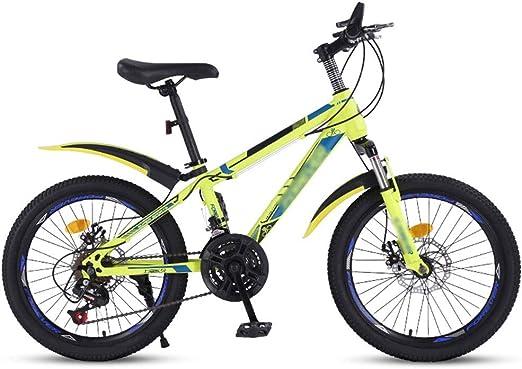 Paseo Niños Y Niñas De Bicicletas Montar A Caballo Al Aire Libre ...
