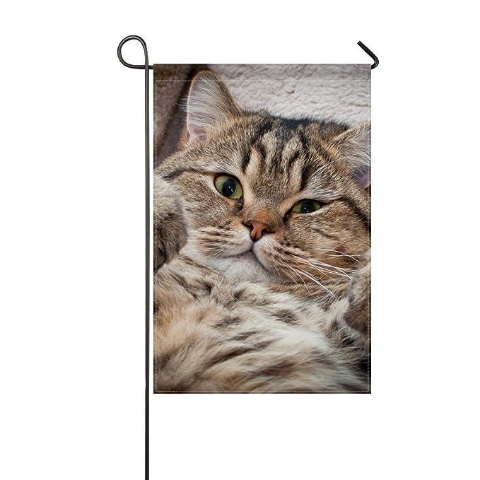 RH Studio - Bozal grueso para gatos, diseño de bandera de jardín, 30, 48 x 45, 72 cm (sin mástil): Amazon.es: Jardín