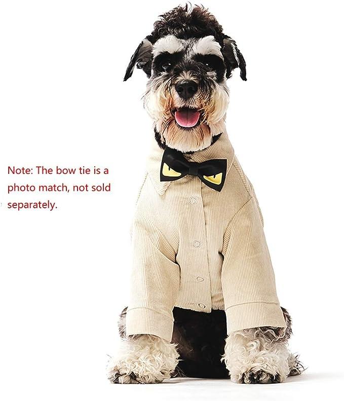 YSNUK Ropa para mascotas Suministros Para Mascotas Ropa Para Perros Camisa De Perrito Invierno Teddy Schnauzer Camisa De Perro Pequeña Ropa De Pana Caliente, Caqui (S), L (L) Traje de mascota, sala