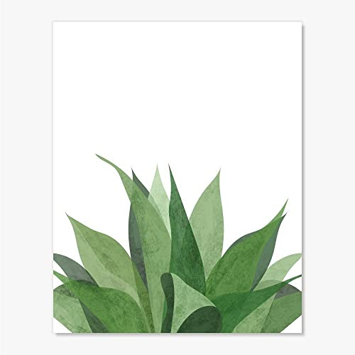 Amazoncom Succulent Plant Botanical Wall Art Print Big Large