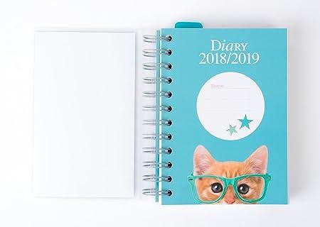 Amazon.com : Grupo Erik editores Studio Pets - School Agenda with Spiral in Spanish with Cat Design, 11.4 x 16 cm : Office Products