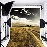 Laeacco 5x7ft Vinyl Backdrops Photography Natural Wildness Scenic Background Cloudy Sky Lonely Road Mountain Scene Photo Background Gloomy Sky