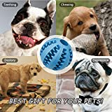 Amuda Pet IQ Interactive Treat Food Dispensing Ball, Non Toxic, Soft Rubber Bouncy Dog Cat Tooth Cleaning Chewing Training Toys Balls