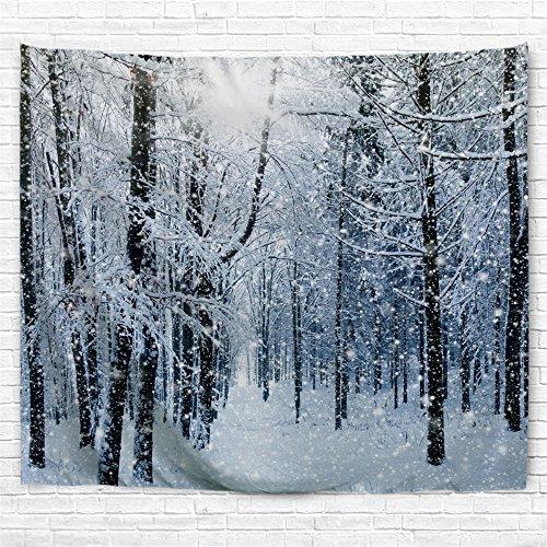 snow scene pictures - 8
