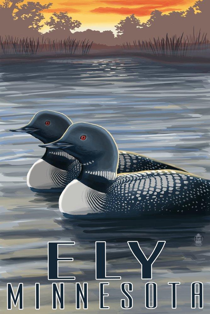 Ely、ミネソタ州 – Loon On Lake 24 x 36 Giclee Print LANT-33599-24x36 B00N5CJBP0  24 x 36 Giclee Print