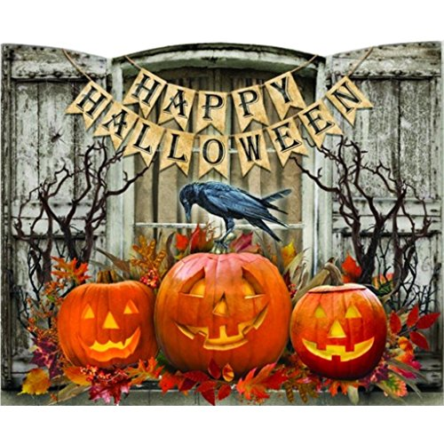 Timeless By Design Lighted Hallo Shuttered Window Canvas, Halloween Themed