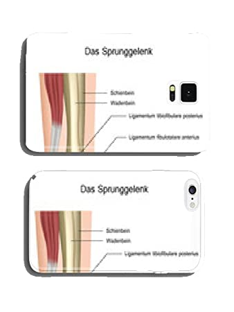Anatomie des Sprunggelenks Handy Cover Case Hülle: Amazon.de: Elektronik