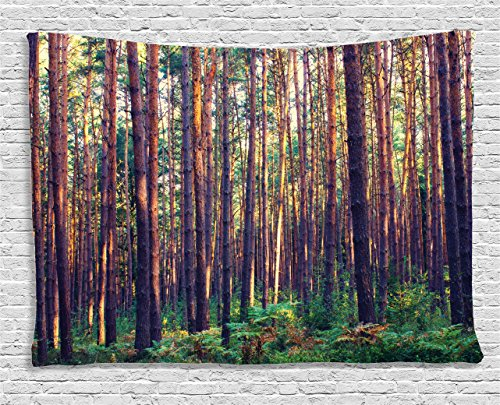 (Ambesonne Farm House Decor Tapestry, Forest in The Morning Light Tall Trees Trunks Greenery Natural Environment Picture, Wall Hanging for Bedroom Living Room Dorm, 80 W X 60 L, Green and Brown)