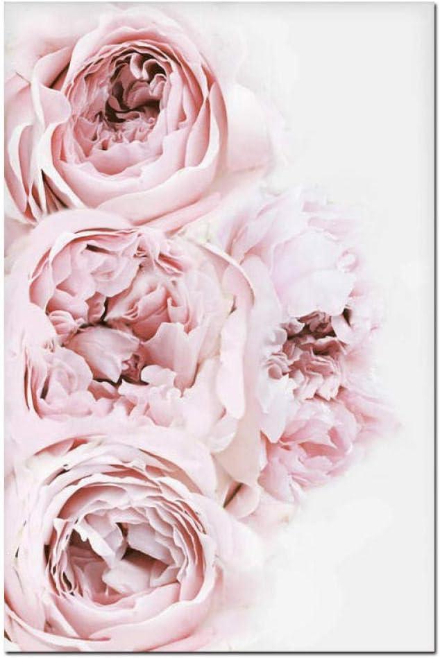 zsBig6 Cuadro en Lienzo Decoraci/ón n/órdica Flor de peon/ía Rosa Cartel e impresi/ón Amor Arte de la Pared Imagen Floral Decoraci/ón del Dormitorio Decoraci/ón del hogar 40x60cmx3 sin Marco