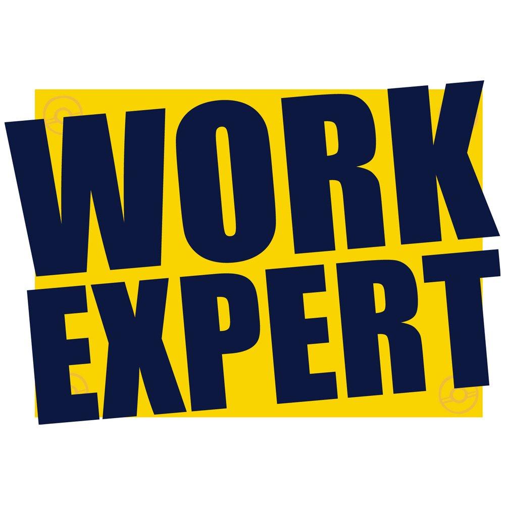 travail Expert m/étrique Flexible r/éversible /à cliquet Lot de 6/DIY Outil Cl/é 8 19/mm