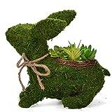 Byher 12 Inch Topiary Frame,Handmade Animal Moss Bunny Rabbit Planter for Garden Decor Review