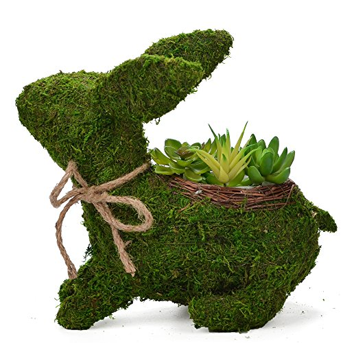 Byher 12 Inch Topiary Frame,Handmade Animal Moss Bunny Rabbit Planter for Garden Decor