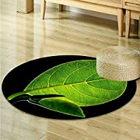 Anti-Skid Area Rug A plant with vitality Soft Area Rugs -Round 47