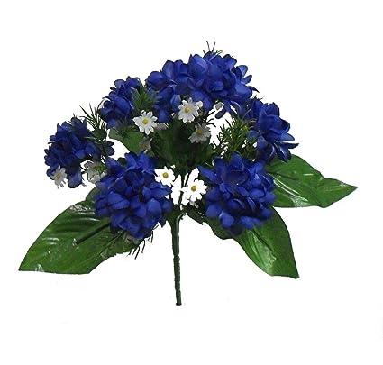 Amazon.com Mini Mums x 7 Bush ~ Royal Blue Silk Wedding