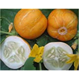 CUCUMBER - Lemon - 20 SEEDS [easy to grow]: Amazon.co.uk ...