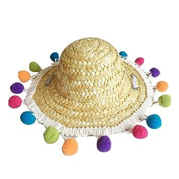 Lazzykit Sombrero de Paja para Gato Perro Pequeño Animales con ...