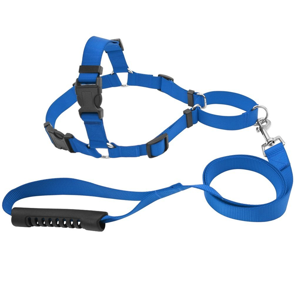 bluee S bluee S Jim Hugh Pet No-Pull Nylon Dog Harness with Leash Training Front-Attachment Harness Stop Pulling On Lead Small Medium Large